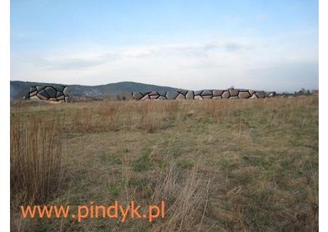 Działka na sprzedaż - Wojcieszyce, Stara Kamienica, Jeleniogórski, 1668 m², 99 500 PLN, NET-PIN20000