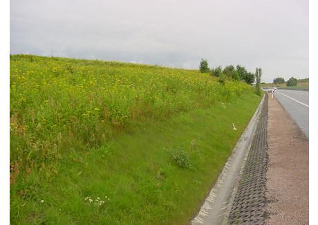 Działka na sprzedaż - OBWODOWA Jankowo Gdańskie, Gdański, 20 000 m², 2 600 000 Euro (10 998 000 PLN), NET-IB0694