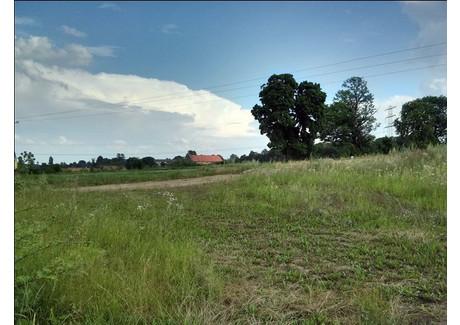 Działka na sprzedaż - Wyry, 4982 m², 385 000 PLN, NET-14792/01191S/2014