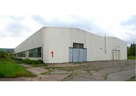 Fabryka, zakład do wynajęcia - Korczyna, Krośnieński, 2202 m², 14 313 PLN, NET-27860620