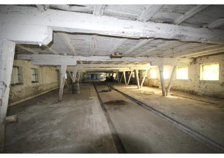 Fabryka, zakład na sprzedaż - Nowogard, Goleniowski, 650 m², 100 000 PLN, NET-RN000231