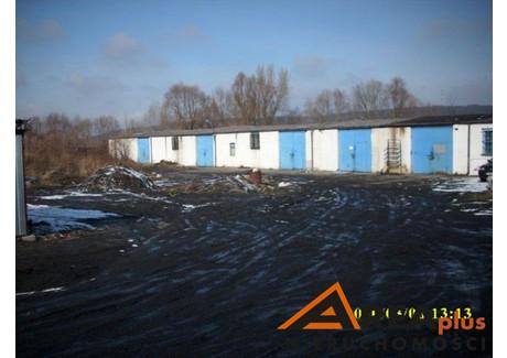 Magazyn do wynajęcia - Kazimierza Wielkiego, Włocławek, Włocławek M., 420 m², 4200 PLN, NET-RDW-HW-90012-1