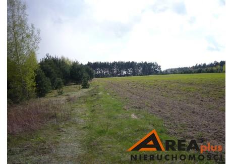 Działka na sprzedaż - Ciechocinek, Aleksandrowski, 35 800 m², 7 088 000 PLN, NET-RDW-GS-94626-2