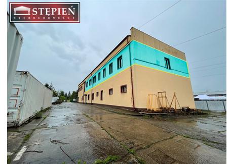 Biurowiec do wynajęcia - Centrum, Jelenia Góra, Jelenia Góra M., 370 m², 13 000 PLN, NET-LW-13732
