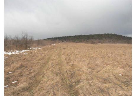 Działka na sprzedaż - Os. Dąbrowa, Kielce, 851 m², 250 000 PLN, NET-2012201