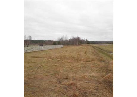 Działka na sprzedaż - Baran, Mniów, Kielecki, 11 100 m², 222 000 PLN, NET-2011205#