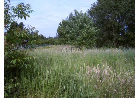 Działka na sprzedaż - Lisiniec, Częstochowa, Częstochowa M., 3794 m², 460 000 PLN, NET-ASP-GS-2668