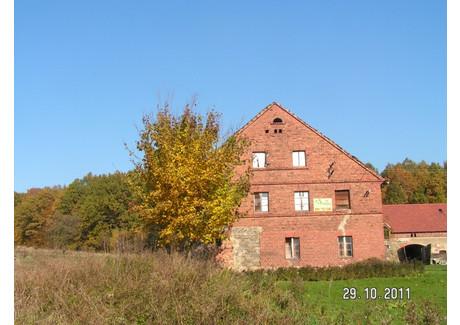 Gospodarstwo rolne na sprzedaż - Olszyna, Olszyna (gm.), Lubański (pow.), Dolnośląskie, 300 m², 80 000 PLN, NET-KOM1OL