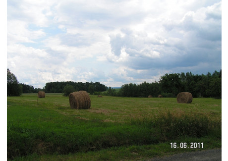 Działka na sprzedaż - Nowa Świdnica, Olszyna (gm.), Lubański (pow.), Dolnośląskie, 11 800 m², 60 000 PLN, NET-DZ1NSW