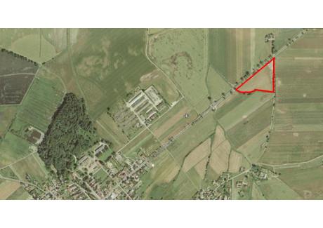 Działka na sprzedaż - Sidzina, Łambinowice, Nyski, 12 300 m², 220 000 PLN, NET-299