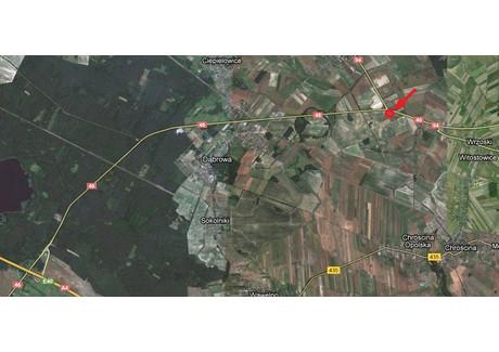 Działka na sprzedaż - Karczów, Dąbrowa, Opolski, 35 100 m², 6 142 500 PLN, NET-230