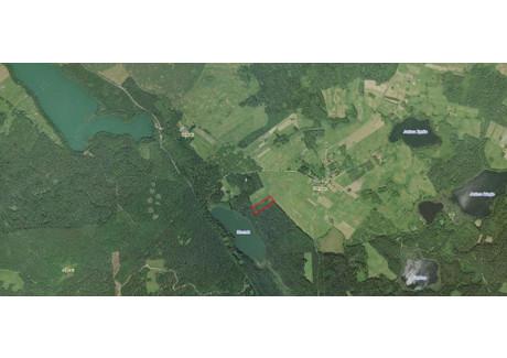 Działka na sprzedaż - Danowo, Miłki (gm.), Giżycki (pow.), 10 400 m², 114 400 PLN, NET-000256