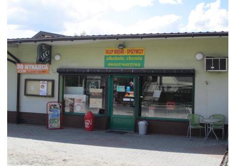 Lokal do wynajęcia - Ostrów Wielkopolski, Ostrowski, 100 m², 1400 PLN, NET-8810439