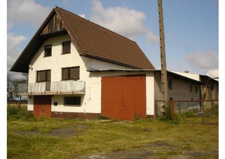 Fabryka, zakład na sprzedaż - Leśnica, Strzelecki, 1200 m², 890 000 PLN, NET-ZUR-BS-1480