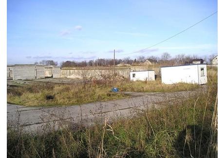 Fabryka, zakład na sprzedaż - Krapkowice, Krapkowicki, 20 000 m², 550 000 PLN, NET-ZUR-BS-2050