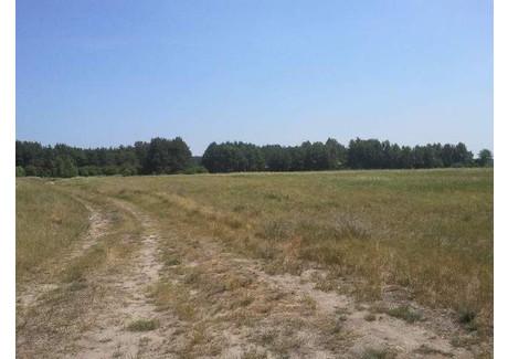 Działka na sprzedaż - Lubczyna, Goleniów, Goleniowski, 23 000 m², 1 035 000 PLN, NET-SCNS2445