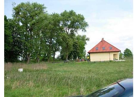 Działka na sprzedaż - Rurzyca, Goleniów, Goleniowski, 5100 m², 561 000 PLN, NET-SCNS1568