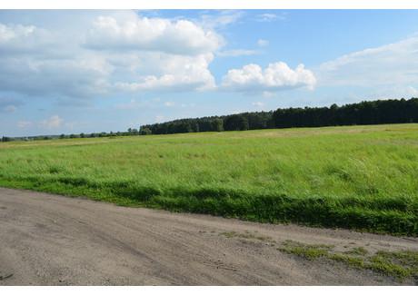 Działka na sprzedaż - Wielgowo, Szczecin, 3000 m², 162 000 PLN, NET-SCNS2342