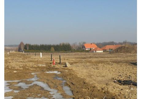 Działka na sprzedaż - Mierzyn, Dobra (szczecińska), Policki, 1695 m², 322 050 PLN, NET-SCNS2509