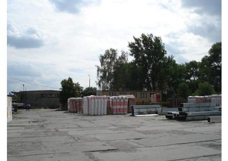 Komercyjne do wynajęcia - Stargard, Stargardzki, 750 m², 15 000 PLN, NET-SCNS1285