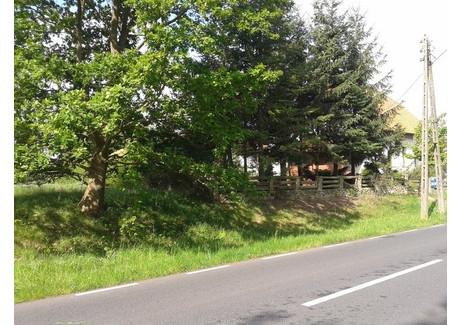 Działka na sprzedaż - Nowe Warpno, Policki, 3000 m², 149 000 PLN, NET-SCN20860