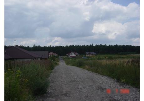 Działka na sprzedaż - Dołuje, Dobra (szczecińska), Policki, 17 641 m², 1 680 000 PLN, NET-SCNS2341