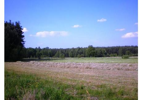 Działka na sprzedaż - Władzin, Kołbiel, Otwocki, 17 800 m², 215 000 PLN, NET-BAS00543