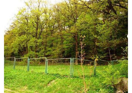 Działka na sprzedaż - Wicko, Międzyzdroje, Kamieński, 2971 m², 300 000 PLN, NET-BAS00745