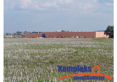 Działka na sprzedaż - Ustowo, Kołbaskowo, Policki, 50 000 m², 2 013 900 PLN, NET-KOM06713