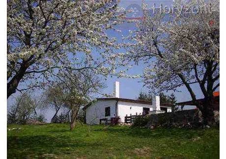 Dom na sprzedaż - Ińsko, Stargardzki, 400 m², 690 000 PLN, NET-HOR01646