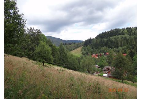 Działka na sprzedaż - Nostrożny Lachy, Brenna, Brenna (Gm.), Cieszyński (Pow.), 2453 m², 275 000 PLN, NET-5000