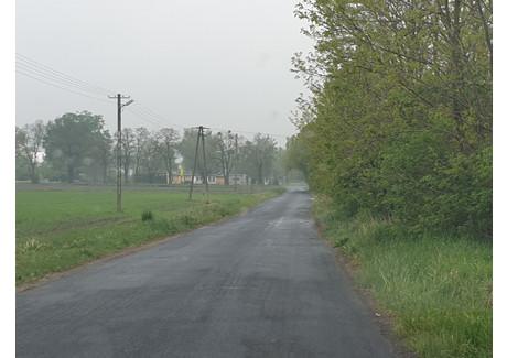 Działka na sprzedaż - Gawartowa Wola, Leszno (gm.), Warszawski Zachodni (pow.), 3000 m², 168 000 PLN, NET-778330