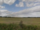 Działka na sprzedaż - Międzybórz, Oleśnicki (pow.), 1445 m², 158 950 PLN, NET-1440