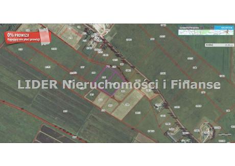 Działka na sprzedaż - Łeba, Charbrowo, Wicko, Lęborski, 16 800 m², 134 400 PLN, NET-LID-GS-8136