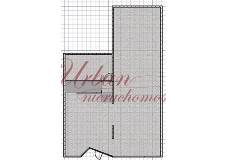Lokal do wynajęcia - Centrum, Szczecin, 420 m², 25 000 PLN, NET-URB20935