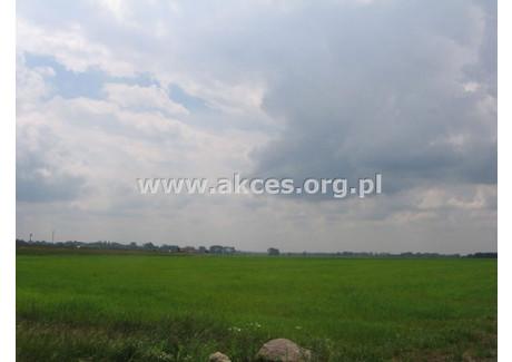 Dom na sprzedaż - Wola Pieczyska, Chynów, Grójecki, 100 m², 300 000 PLN, NET-API-DS-140227