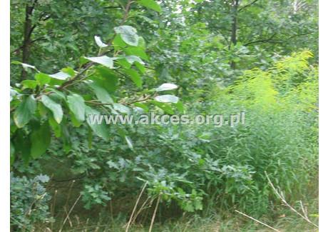 Działka na sprzedaż - Żółwin, Brwinów, Pruszkowski, 14 311 m², 1 400 000 PLN, NET-ACE-GS-68543