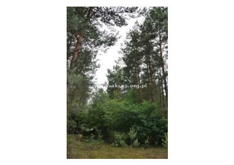 Działka na sprzedaż - Różan, Makowski, 13 047 m², 129 000 PLN, NET-ASK-GS-94405
