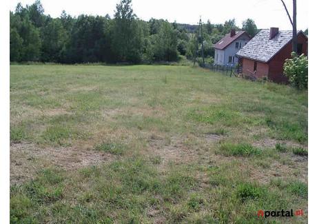 Działka na sprzedaż - Podjazy, Sulęczyno (gm.), Kartuski (pow.), 5300 m², 232 500 PLN, NET-G870512