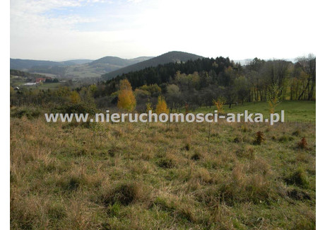 Działka na sprzedaż - Przyszowa, Łukowica, Limanowski, 3500 m², 105 000 PLN, NET-ARK-GS-17372