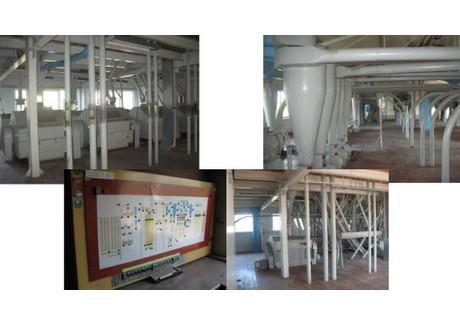 Fabryka, zakład na sprzedaż - Staw, Chełm (gm.), Chełmski (pow.), 3049,5 m², 3 252 000 PLN, NET-7
