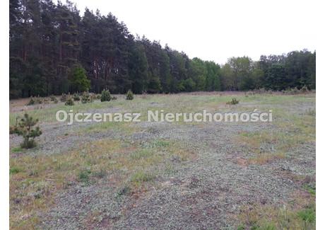 Działka na sprzedaż - Otowice, Dąbrowa Chełmińska, Bydgoski, 3100 m², 170 500 PLN, NET-OJN-GS-120318
