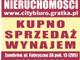 Lokal do wynajęcia - Mazowiecka Zambrów, Zambrowski, 25 m², 900 PLN, NET-02/L/2020