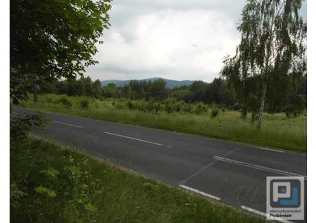 Grunt na sprzedaż - Piechowice, Jeleniogórski (pow.), 15 000 m², 600 000 PLN, NET-JGJP-2186
