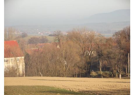 Działka na sprzedaż - Owiesno, Dzierżoniów (gm.), Dzierżoniowski (pow.), 16 500 m², 577 500 PLN, NET-US-0100D