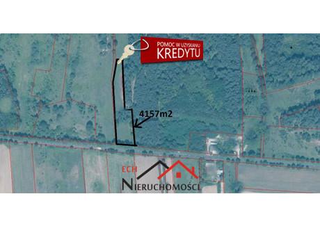 Działka na sprzedaż - Łęgowo, Stare Kurowo, Strzelecko-Drezdenecki, 4157 m², 88 000 PLN, NET-ECH-GS-3298