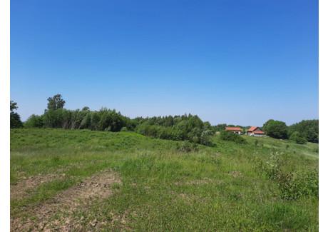 Działka na sprzedaż - Kadyny Tolkmicko, Elbląski, 3000 m², 75 000 PLN, NET-2879