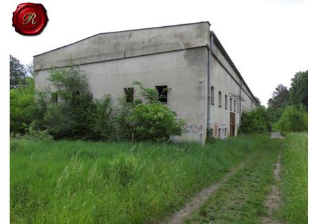 Działka na sprzedaż - Osiedle, Koronowo, Bydgoski, 15 000 m², 500 000 PLN, NET-REZB20693