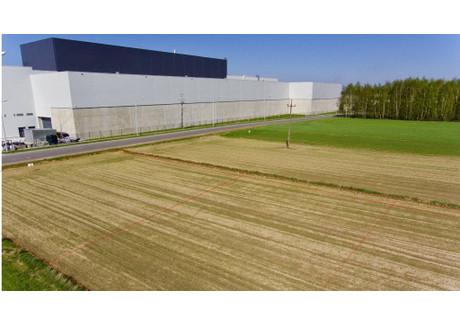 Działka na sprzedaż - Sieradz, Sieradzki, 1454 m², 100 000 PLN, NET-KWK-GS-2869