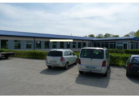 Fabryka, zakład na sprzedaż - Czernin, Dygowo, Kołobrzeski, 968 m², 1 600 000 PLN, NET-16537